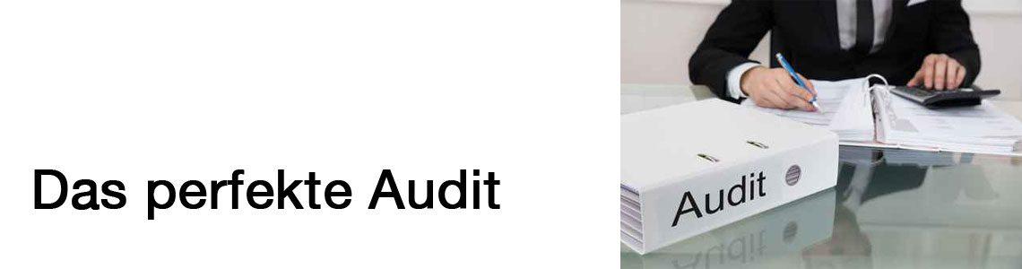 Audit für optimale Prozesse